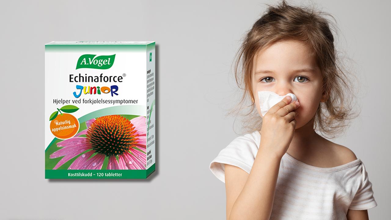 A. Vogel Echinaforce Junior – for forkjølelsessymptomer