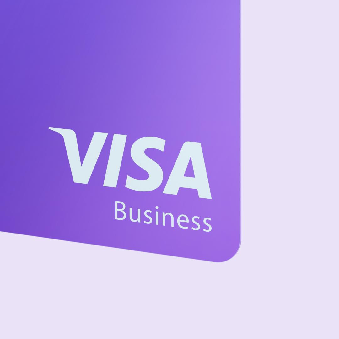 Visa Logo Visa Deutschland