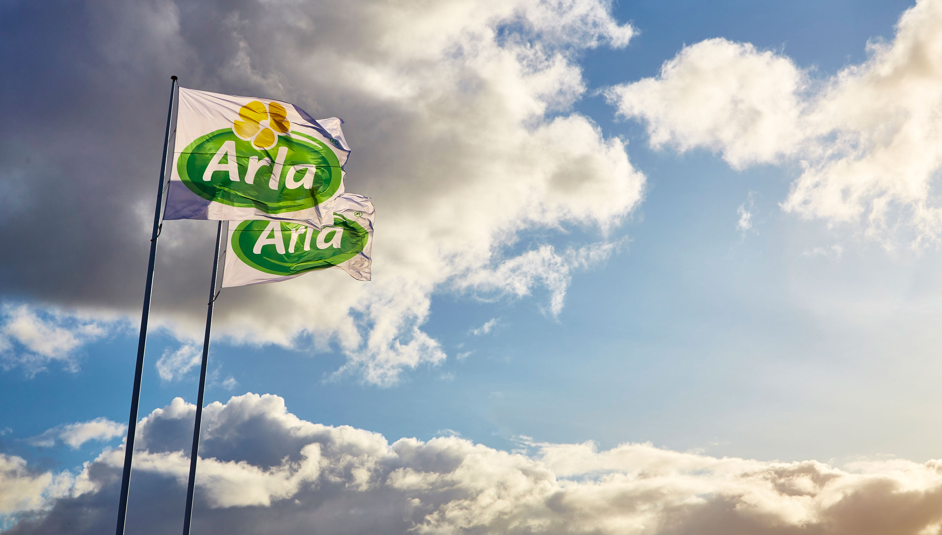 ​New cost-saving programme to transform Arla Foods