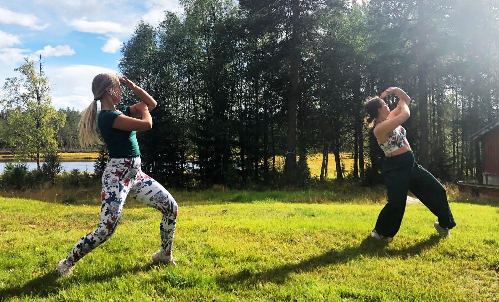Dans Hemleverans - Initiativ av Marika Renhuvud