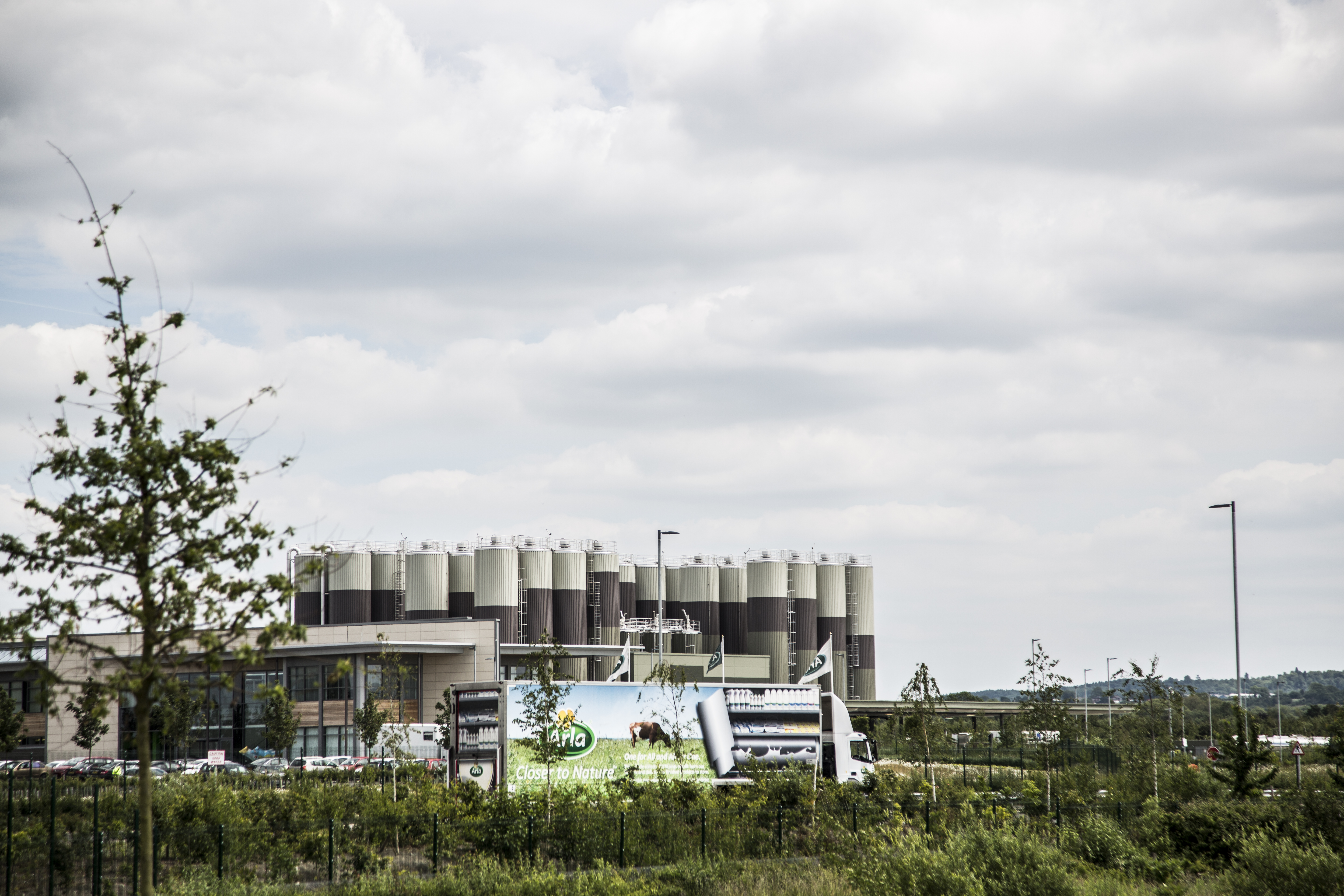Arla turns up investments to boost profitability
