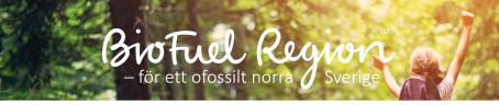 Karin Malmfjord, ny styrelsemedlem i BioFuel Region