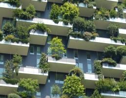 Nachhaltiger Weg aus der Krise – Baubranche kann mit gutem Beispiel vorangehen