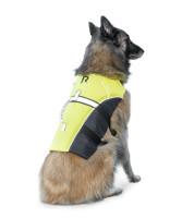 Bild med länk till högupplöst bild Regatta flytväst hund/katt