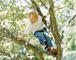 Børn forsikring ulykkesforsikring børneforsikring If