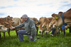 Åbent Landbrug 2017