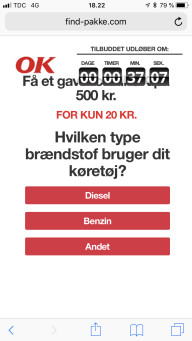 Falsk hjemmeside1