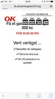Falsk hjemmeside4