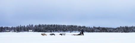 Richard Diset med hundespann (Foto: Lena Brenden, Coloplast)