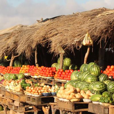 Chinsalibesök med fokus på demokratiarbete