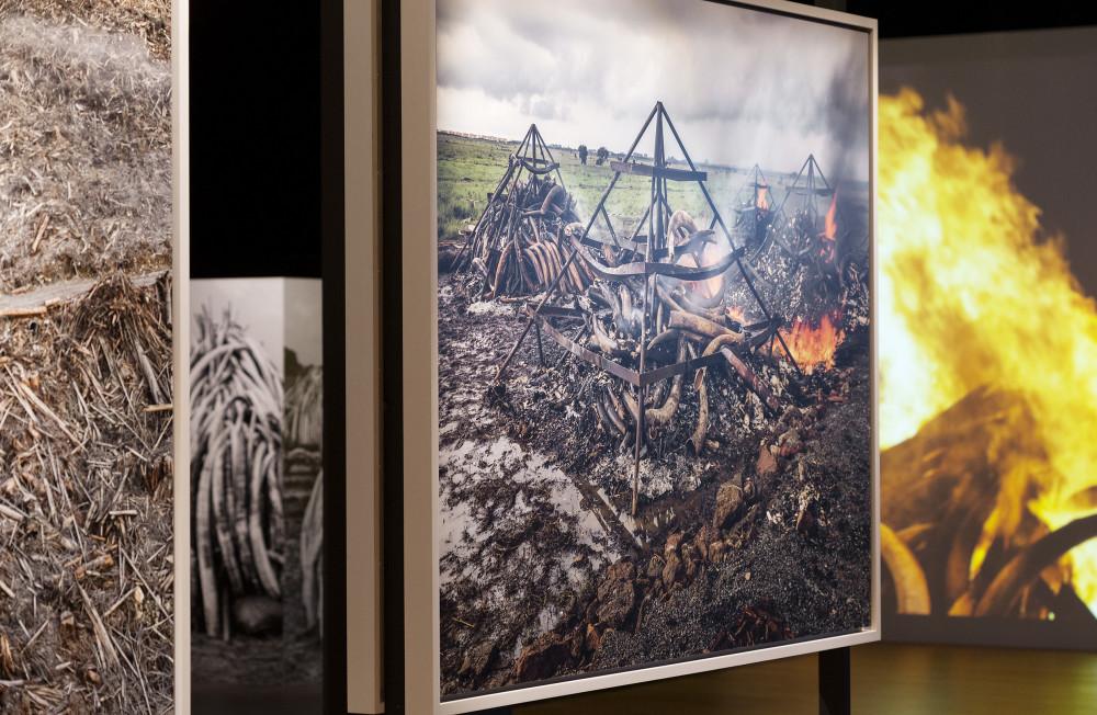 Tekniska öppnar – digital pressvisning av nya utställningarna Moving to Mars och Antropocen 2