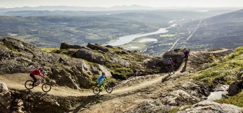 Fakta om svensk turism – 2017 ett starkt år