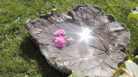 DIY – Støp rabarbrablad i betong