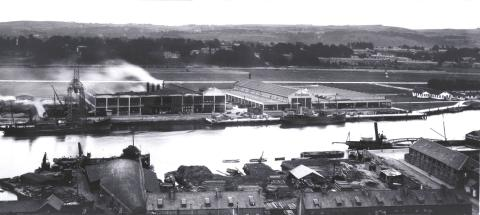 Fordson-Plant-Cork