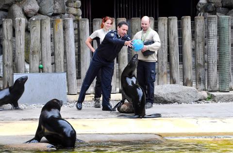 Zoo-Orakel Rostock