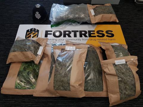 Police discover large scale cannabis factory in Brighton