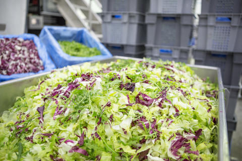 Mistä syntyy Hetki- salaattien rapeus?