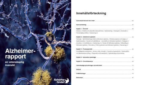 Sveriges första Alzheimerrapport ska öka kunskapen om demenssjukdomar