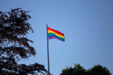Malmö ger stöd till HBTQ-certifiering och antidiskriminering