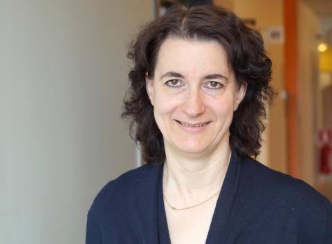 Professor vid Karlstads universitet deltar som expert under Almedalsveckan