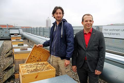 IntercityHotel Leipzig beherbergt 180.000 Honigbienen auf dem Dach