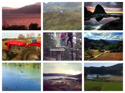Collage innsendte bilder