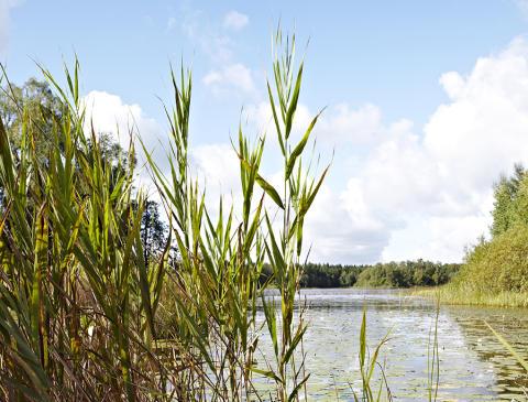 Plan för utbyggnad av kommunalt vatten och avlopp i Lund