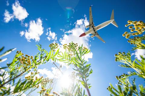 Kaupunkihyppely ja pikalomat kiinnostavat Norwegianin matkustajia tänä kesänä