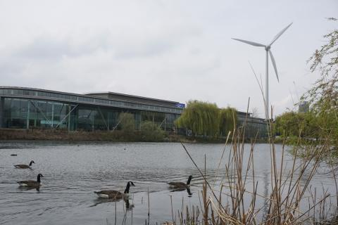 Bilfabrik oväntad tillflyktsort för 50 fågelarter