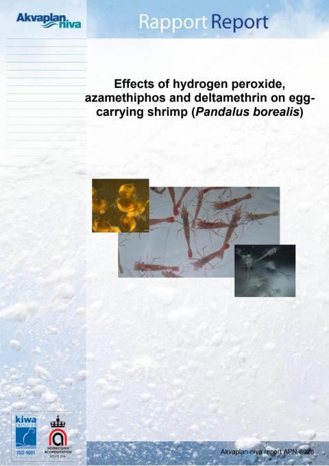 Lusemidler og egg-bærende reker Akvaplan-niva rapport