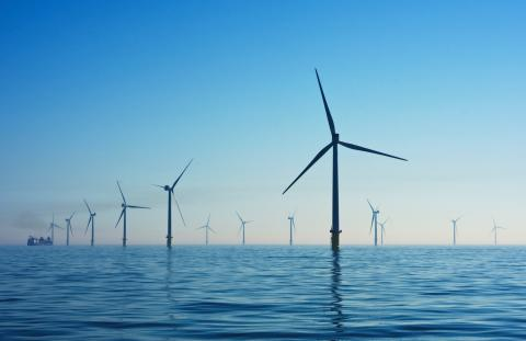 Roadmap to Offshore Wind Power Development and Policy Recommendations for Vietnam
