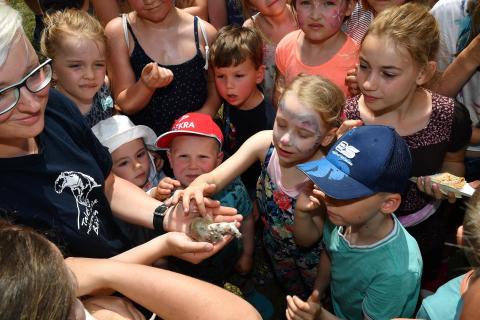 Kindertag am 03. Juni im Zoo Rostock