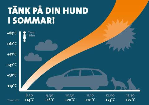 Tänk på din hund i sommarvärmen!