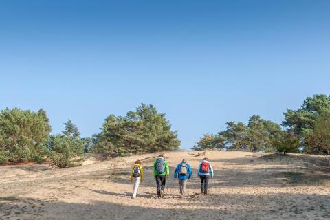 Die Wanderschuhe schnüren: Am 14. Mai ist der bundesweite Tag des Wanderns