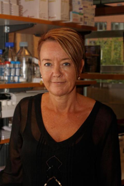 Intervju med Anette Sundstedt – Idogens nytillträdda CSO