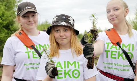 Taloushallinnon toimija, lähde mukaan Taimiteko-haasteeseen ja toimi ilmaston hyväksi!