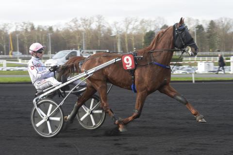 Fransk kanonhäst tar plats i Åby Stora Pris!