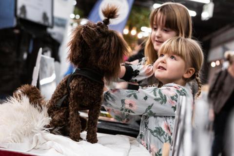 Hundtätt med 8 700 hundar på årets MyDOG