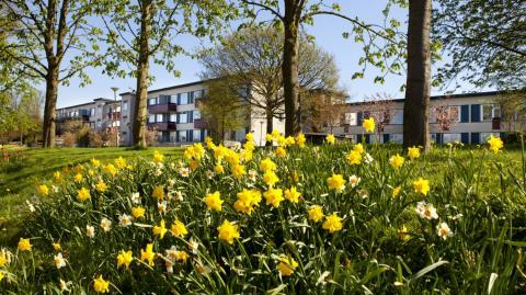 Smart och miljövänlig energi till AF Bostäder i Lund