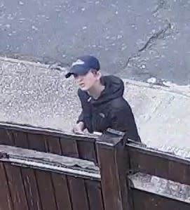 20190812-cctv-youth1-attempt-burglary-hastings-201908050324-best-res