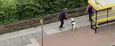 Police ask for help to idenitfy dog walker