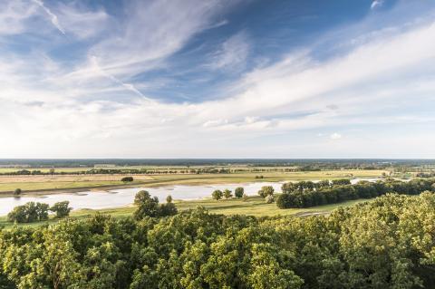Elbe bei Lenzen
