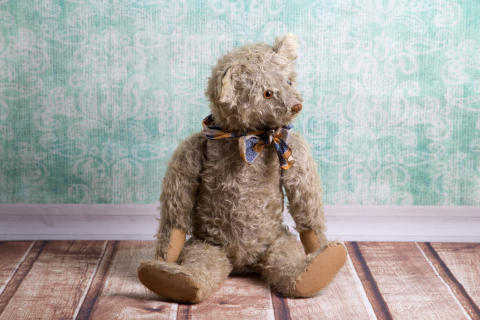 COMMENT: Cuddly parasites: how teddy bears got their claws into children