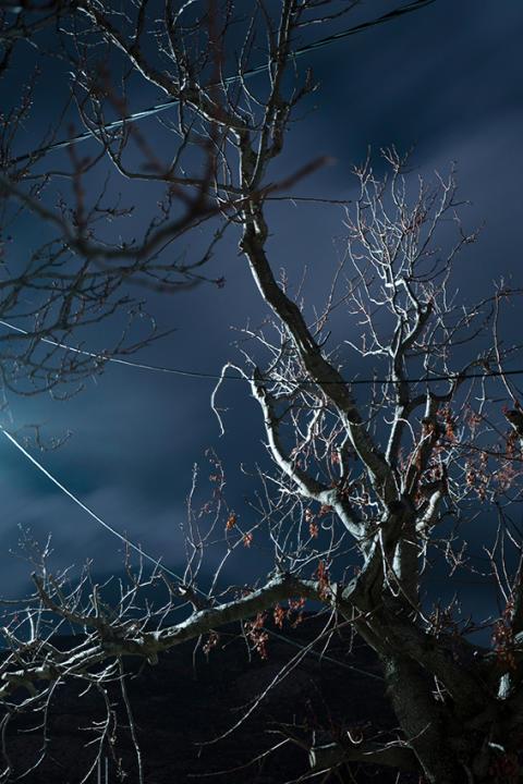 © Ioanna Sakellaraki, Greece, Student Photographer of the Year, 2020 Sony World Photography Awards