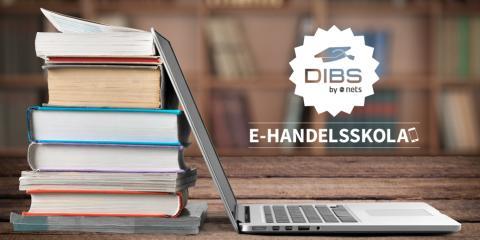 DIBS E-handelsskola: för e-handel i tillväxt