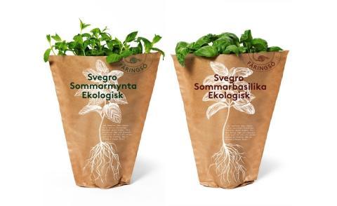 Svegro minskar plasterna: lanserar sommarörter i pappersförpackning