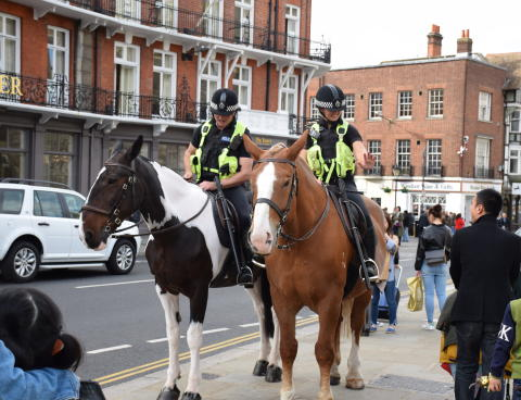 Updated- Mounted Section gearing up to police Royal Wedding - Windsor