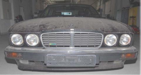 Jaguar [2 - front]
