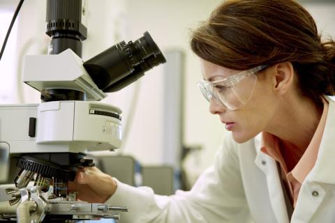 AbbVie kooperiert mit Principia zur Erforschung neuartiger Wirkansätze in der Immunologie
