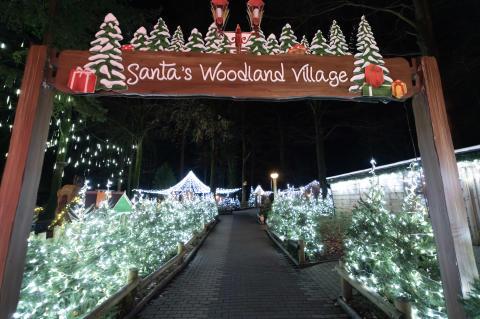 Santa's Woodland Village (photo credit Dynamic Aperture).jpg
